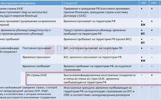 Платить ли пенсионные взносы за временно пребывающих в россии граждан из еаэс? — все о налогах