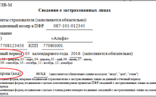 Штраф за просроченные в 2016 году сзв-м можно оспорить — все о налогах