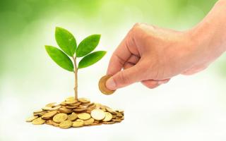 Экологический сбор: с 4 сентября — новые правила — все о налогах