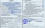 Форма 18 — карточка учета организации — бланк и образец заполнения — все о налогах