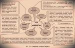 Минфин разъяснил, как учесть убытки от «безответственного» хранения — все о налогах