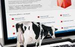 Электронная ветеринарная сертификация с 2018 года — все о налогах