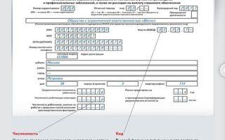 Форма 4-фсс за год — бланк отчетности и пример заполнения — все о налогах