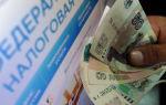 Фнс не может взыскать долги по взносам — все о налогах