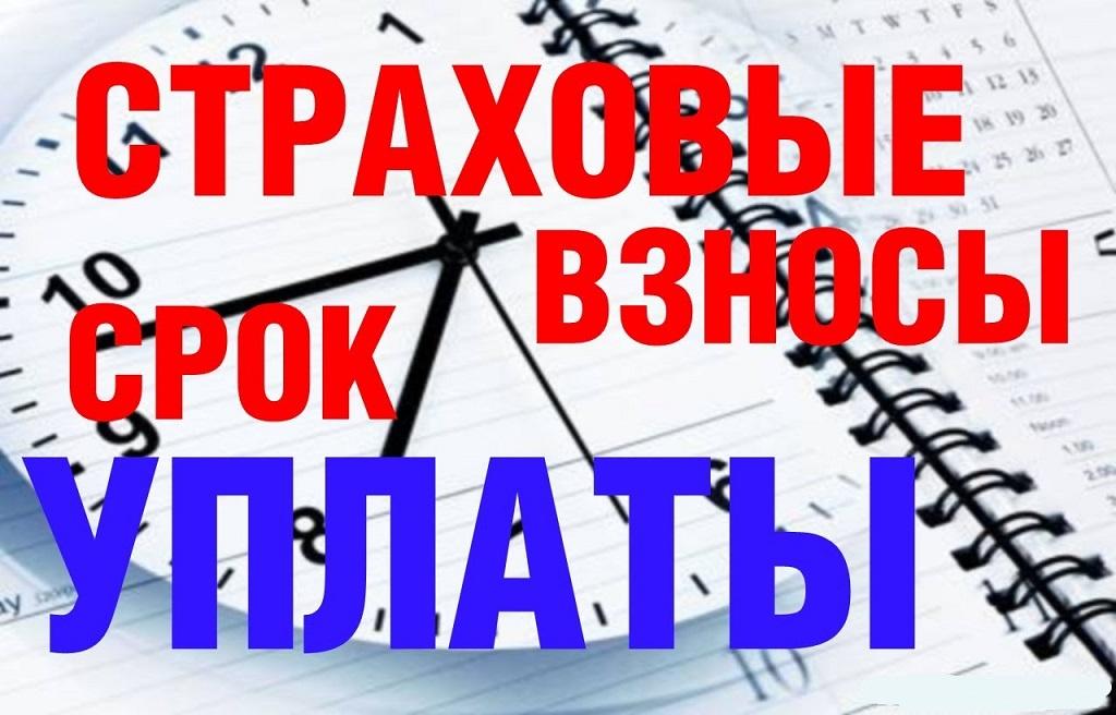 ФНС обновит форму декларации по ЕНВД